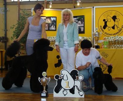 Bruno-Nejlepší pes v moderním střihu a celkový vítěz, vedle Nejlepší fena v moderně.